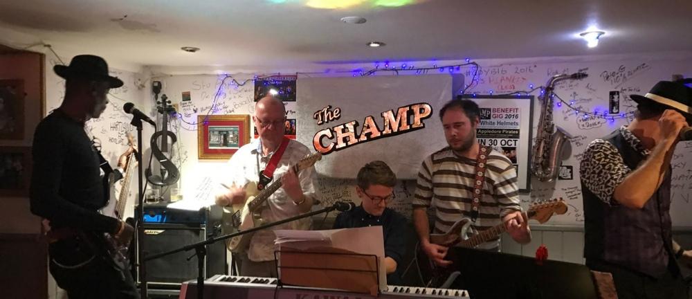 Live music gig at the Champ Appledore North Devon